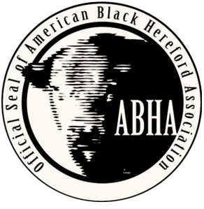 American Black Hereford Association
